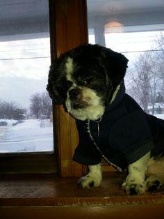 Toby modeling his hoodie
