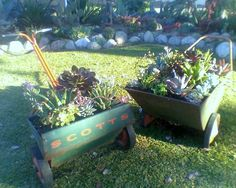 Container Garden Ideas with Succulents | succulent designs>1960's Scotts Garden Seeder and Milcor Pick-up Cart ...