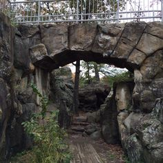 Day 23: Go to Taylors Falls, MN for Wannigan Days.