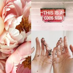 06⎥16 moodboard aureliedhuit.com #moodboard #tendance #June #juin #inspiration #design #graphic #graphisme #flowers #fleurs #delicate #delicatesse #mains #hands #terre #durt #sign #panneau #signalitique #good #rose #pink #pastel #colors Ballet Shoes, Dance Shoes, Inspiration Design, Art Director, Graphic, Pastel, Rose, June, Sign
