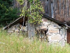 Taken along the back roads of Haliburton County.