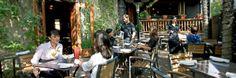 Cilantro | Calgary Restaurant on 17th Avenue | Photos Love the patio!!