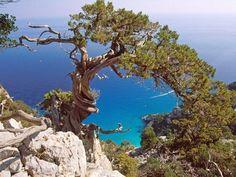 Santa Maria Navarrese - Sardegna - Italia