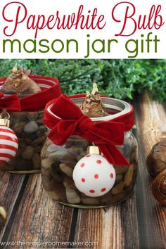 DIY Paperwhite Bulb Mason Jar Gift #MadeFromHere Great Christmas gift for a teacher or neighbor!