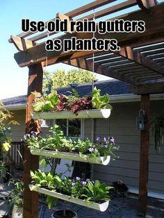 rain gutter planters genius ideas, inventions #outdoors #landscape #garden