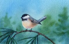 CHICKADEE IN THE PINES watercolor bird painting, painting by artist Barbara Fox