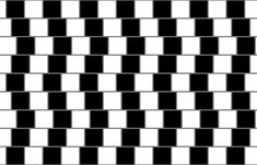 "The café wall illusion was first described by Doctor Richard Gregory. He observed the curious effect in the tiles of the wall of a café in Bristol. It makes the parallel straight horizontal lines appear to be bent. To construct the illusion, alternating light and dark ""bricks"" are laid in staggered rows. It is essential that each ""brick"" is surrounded by a layer of ""mortar"" (the grey in the image). This should ideally be of a color in between the dark and light color of the ""bricks""."