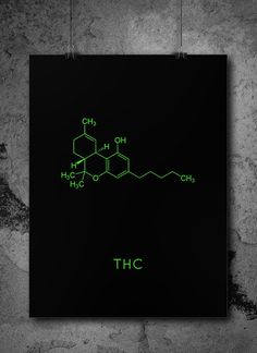 Chemistry 619174648754477453 - Source by Science Gifts, Science Geek, Science Art, Chemistry Tattoo, Chemistry Art, Drugs Art, Stoner Art, Wow Art, Snake Plant