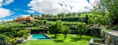 Quinta do Vallado , hotel with both a 18th century manor and and modern wing. 17 rooms. In the Douro valley, Portugal