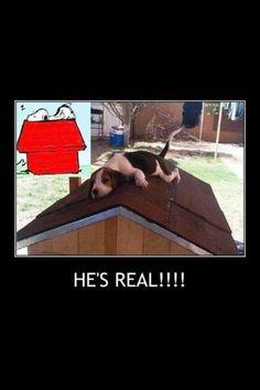 Snoopy lives!