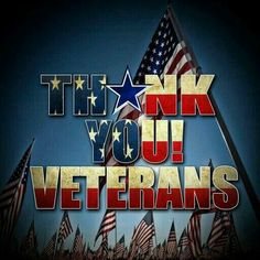 We salute your service! off DJ service for all Veterans today & tomorrow! Veterans Day Photos, Happy Veterans Day Quotes, Veterans Day 2019, Military Veterans, Honor Veterans, Military Life, Military Dogs, Happy Quotes, Thank You Veteran