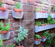 Recycled Basket Planters Old Cd Baskets Make A Perfect Container Herb Garden Great Idea For Small Gardens