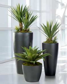 Broad Leaf Agave<br>Artificial Succulent Plant GREEN