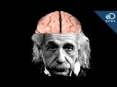 How Einstein's Brain Is Different Than Yours - YouTube