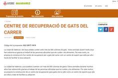 """Entra en la web del ayuntamiento y participa de la """"Votación ciudadana"""" para decidir en que gastar el presupuesto. Si estás empadronad@ en Valencia, esta es tu OPORTUNIDAD DE AYUDAR A LOS GATOS ABANDONADOS.  El Ayuntamiento propone la creación de un Centro de Recuperación de los Gatos abandonados que malviven en las calles.   #Ayuntamiento de Valencia #Colonias de gatos urbanos #Gatos #Gatos callejeros #Votación ciudadana Valencia, Town Hall, Opportunity, The Creation, Centre"""