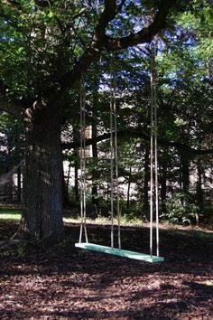 you'll look sweet upon the seat of a swing that is built for two on my bucket list. Love a two seater tree swing