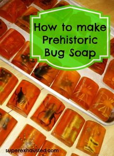 I have to remember this one for when the kids want a bug themed party or even just for a fun gift to creep people out. Bug Birthday Party Idea:  How to make Bug Soap.