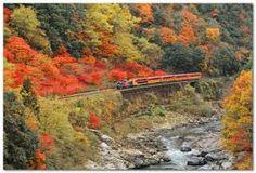 Torokko-Saga Sta  嵯峨野トロッコ列車  http://www.sagano-kanko.co.jp/truck.html