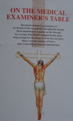 Photograph of a page from a book indicating that the Man in the Holy Shroud of Turin shows no signs of decay or putrefaction. Crucifixion Of Jesus, Inspirational Prayers, Gods Grace, Religious Art, Gods Love, Bible Quotes, Catholic, Medical, Faith