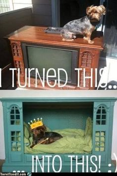 I want to make this Doghouse!