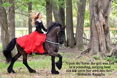 """Upon the horse the girl was lost, in a pounding, surging beat not felt upon her own two feet."" ~B.R. Dressage rider Sandra Beaulieu trotting on her Friesian horse Douwe at Southern Oaks Equestrian Center in Tallahassee, FL. Photo taken by Kimberly Chason."