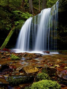 Fern Falls, Coeur D'Alene National Forest, Idaho Panhandle National Forests, Idaho, United States o Photographic Print