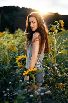 summer evening - Shooting with beautiful Rahel in a sunflower field with wonderful evening light. Sunflower Field Photography, Summer Photography, Girl Photography, Sunflower Field Pictures, Senior Photos Girls, Senior Pictures, Sunflower Fields, Shooting Photo, Portrait Poses