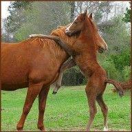 Give Your Mom A Hug!