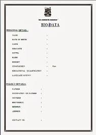 biodata format for job in word