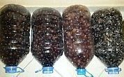 If you do exactly the size of our olives is great. Kebab, Fitness Tattoos, Sunflower Tattoo Design, Turkish Recipes, Homemade Beauty Products, Perfect Food, Food Design, Freezer Meals, Bon Appetit