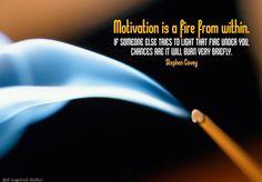 Stephen Covey #Motivation, #Someone  #stephencovey #stephencoveyquotes #kurttasche