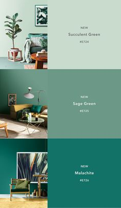CIN Valentine incorpora 12 nuevos colores a Color Revelation Trends 2018 Paint Colors For Home, House Colors, Bedroom Color Schemes, Bright Bedroom Colors, Paint Color Schemes, Green Rooms, Home Trends, Room Paint, House Painting