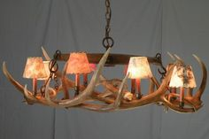 """#510 Elk Antlers suspended under antique single tree. Oval chandelier with 8 up lights with shades and 2 down lights. approximately 51""""X 25"""" X 20"""" www.peakantlers.com"""