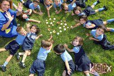 P3 #InfantilISP observando setas. 🍄 #OtoñoISP #InteligencianaturalistaISP