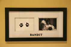 DIY your pet's paw prints.