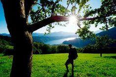 Wandern in den Nockbergen entland des Alpe Adria Trails - einfach Freiheit und Natur spüren #wandern #aat #alpeadriatrail #hiking #pulverer Am Meer, Trail, Mountains, Nature, Plants, Bad, Sport, Slovenia, Mountain Climbing