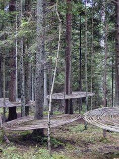 'Tomografia drzewa' (Tree tomography) by Polish land artist Mirosław Maszlanko source: now in art post 4 Landart Festival via Contemporary Basketry: In the Trees Land Art, Instalation Art, Forest Art, In The Tree, Environmental Art, Outdoor Art, Tree Art, Public Art, Landscape Art