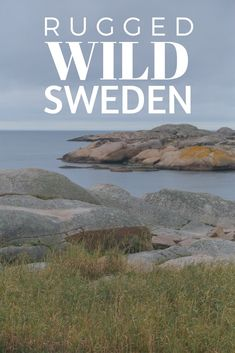 A Road Trip from Gothenburg through West Sweden. Sweden isn't generally the first European country that Americans think to visit but is somewhere dear to my heart - I spend several months living there and that's where I met my now husband. There are many beautiful places to stop on a Sweden West Coast Road Trip - click through to find out our itinerary for a dream trip to Sweden.   Camels and Chocolate #sweden #scandinavia #roadtrip #volvo #visitsweden #westsweden
