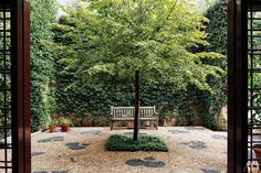 Surrounded by walls blanketed with star jasmine, a lime tree shades a pebbled sunken courtyard.
