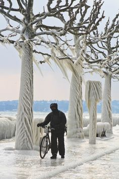 Cold+Cyclist+in+Versoix,+Switzerland+-+In+Versoix+on+Lake+Geneva,+trees,+cars+and+signs+have+been+coated+in+ice+caused+by+strong+winds+and+freezing+temperatures.+I+went+down+early+in+the+morning+to+get+a+few+photos+and+left+covered+in+ice+myself,+but+managed+to+capture+this+man+walking+along+the+road+with+his+bike.