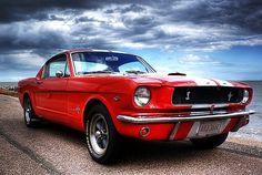 vintage mustang. highway. ocean. red. white.