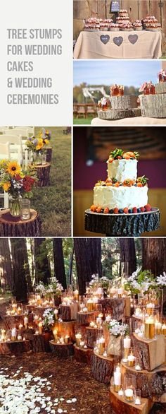Extra wedding decorations and ideas using tree stumps Wooden tree slices or tree stumps could be used as a base for more than just your centrepieces. Large tree slices can be used for your wedding cake or lots of smaller ones for cup cakes or a dessert table. For an outdoor woodland wedding ceremony, position larger tree stumps down either side of the aisle and place jam jars with flowers and candles on top.