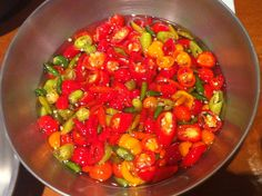 A chef Mara Salles, do Tordesilhas, e seu mestre-pimenteiro ensinam como curtir pimentas brasileiras! Ardido...............bom.  http://www.horadacomida.com.br/tudo-que-voce-precisa-saber-sobre-pimentas/