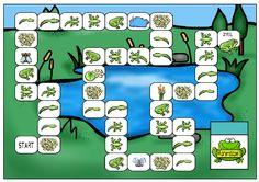 Lebenszyklus Frosch Spiel