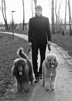 Real men walk poodles! #Standard #poodles