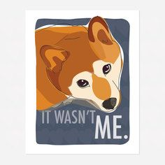 Shiba Inu Art Print, $15, now featured on Fab.