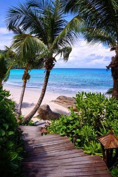 20 most beautiful islands in the world. From French Polynesia to the Caribbean, here are the best islands in the world to visit. Beautiful Islands, Beautiful Beaches, Beautiful World, Dream Vacations, Vacation Spots, Italy Vacation, Paradis Tropical, Les Seychelles, Seychelles Beach