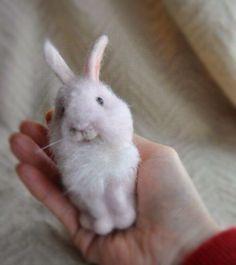 needle felted bunny 鼻を少しリアルに、胸あたりも植毛。曇りですね〜(•͈⌔•͈⑅)♡#羊毛フェルト#羊毛#パステルカラー#ハンドメイド#羊毛でつくる#動物#雪ウサギ #羊毛氈 #羊毛毡 #ウサギ部 #laine #lapin #bunny #rabbit #kawaii #instacraft #needlefelt #felt #woolfelt #workingprogses