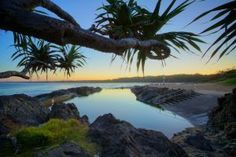 Image result for sawtell rock pool Rock Pools, North Coast, Places Ive Been, Beautiful Places, Paradise, Australia, Beach, Water, Photography