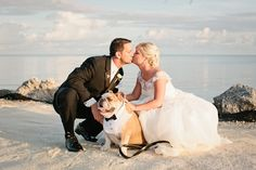 Beach wedding with a bulldog! photo by chelseyboatwright.com